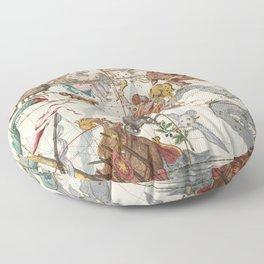 Vintage Constellation Map - Star Atlas Floor Pillow