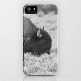 Buffalo in Black and White iPhone Case