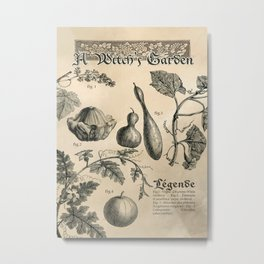 A Witch's Garden - Vintage Book Illustration Metal Print
