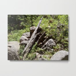 Pointing in the Right Direction Metal Print