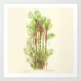 Palmier Rouge - Red Palmtree Art Print