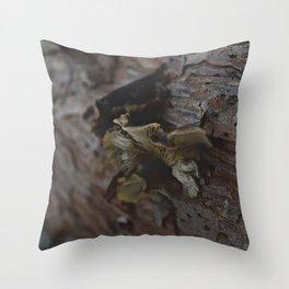 Rustic Nature Throw Pillow