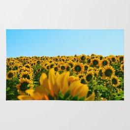 Do as the sunflowers do Rug