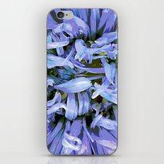 Aster iPhone & iPod Skin