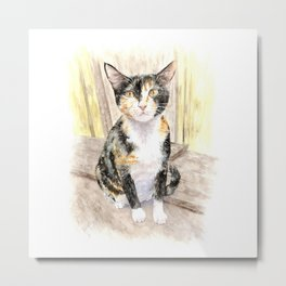 Female Cat at Tai O - a Mother-to-be Metal Print