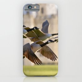 The fly past iPhone Case