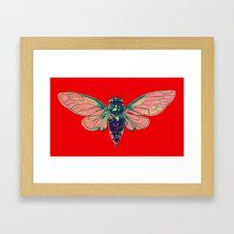 17 Year Cicada Framed Art Print