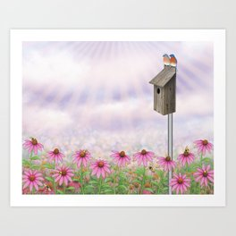 eastern bluebirds, echinacea, and bumble bees Art Print