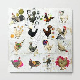 Defenseless Chickens Metal Print