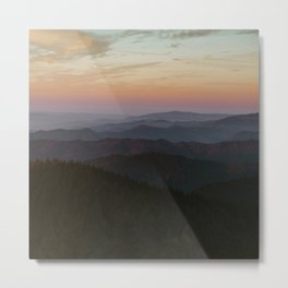 The Black Forest Metal Print