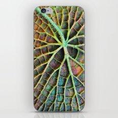 Lily pad iPhone & iPod Skin