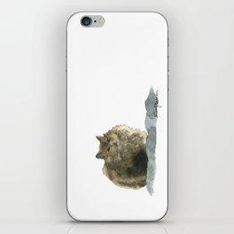 Cat on the rocks iPhone Skin