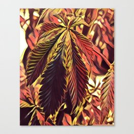 Strawberry Cough Canvas Print