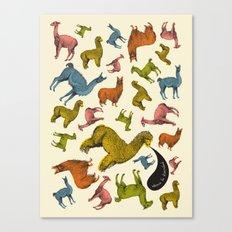 camelids Canvas Print