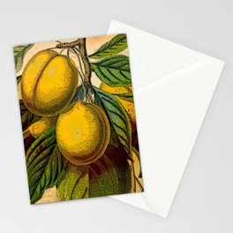 Yellow Plum Branch Stationery Cards