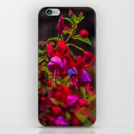Fuchsia Dreams iPhone Skin