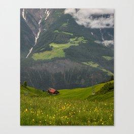 Switzerland Riederalp Photograph, Spring Flowers on the Swiss Alps Canvas Print