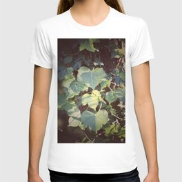 Trailing Ivy #2 T-shirt