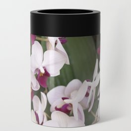 Longwood Gardens Orchid Extravaganza 1 Can Cooler