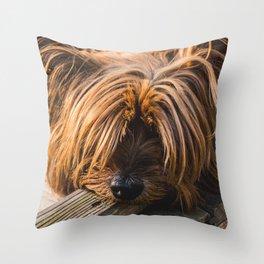 Yorkshire Terrier Biting Wood Throw Pillow