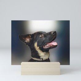 Baby dog Mini Art Print