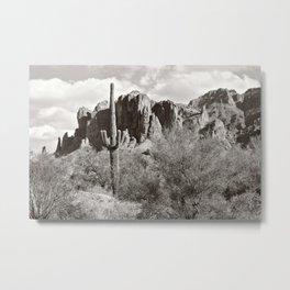 Saguaro in black and white Metal Print