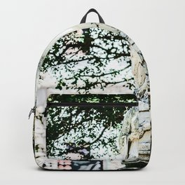 Blessed Virgin Backpack