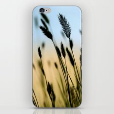 Cascade Grass iPhone & iPod Skin