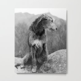 Corinne Metal Print