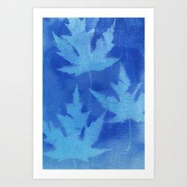 Cyanotype No. 8 Art Print