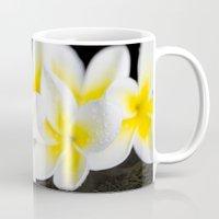 singapore Mugs featuring Plumeria obtusa Singapore White by Sharon Mau