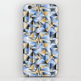 Food Triangle iPhone Skin