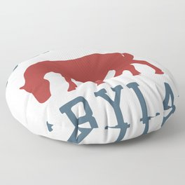 Eastern Shore - Maryland. Floor Pillow