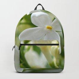 Spring 041 Backpack