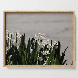 Hyacinth background Serving Tray