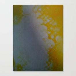 untitled #0014 (spots) Canvas Print
