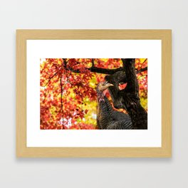 HAPPY THANKSGIVING   FROM WILD TURKEY Framed Art Print