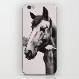 Horse Greeting A Stranger iPhone Skin