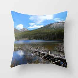 Dreamy Lake Throw Pillow
