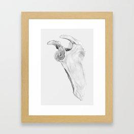 Escápula Framed Art Print