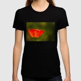La tulipe orange T-shirt