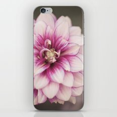 Pink Whisper I iPhone & iPod Skin