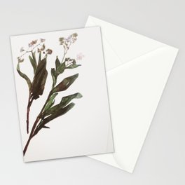 Flowing Lovely Floral Stationery Cards