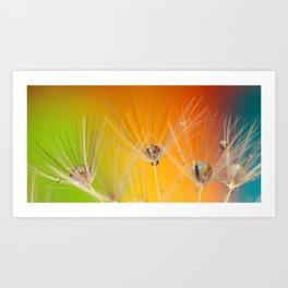 Dandelion Macro Art Print
