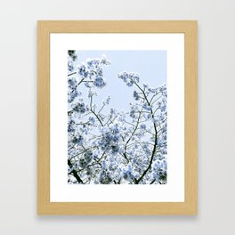 Spring Baby Blue Flowers Framed Art Print