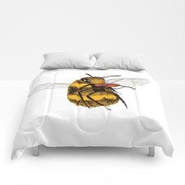 Bee tries Violin Comforters