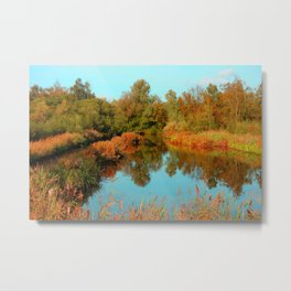 Autumn Colors Pond and Trees Metal Print
