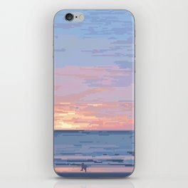 Seagull Sunrise iPhone Skin