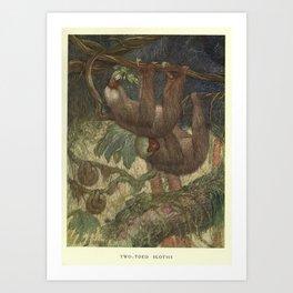 Vintage Sloth Painting (1909) Art Print