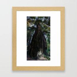 Living Giant Framed Art Print